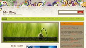 Wordpress Florance Teması 1