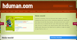 Wordpress Stitchpress Teması 1