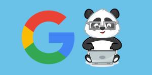Panda 4 Güncellemesi ve Sonrası 1