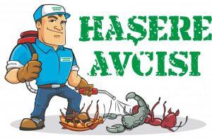 hasere-avcisi-logo-99bb777f372-fyktcr