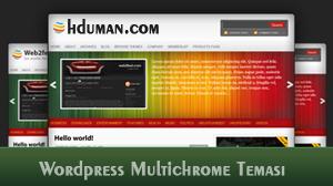 Wordpress Multichrome Teması 1
