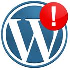 Wordpress Beyaz Sayfa Hatası 1