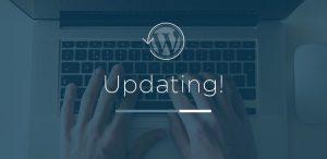 10 Saniyede WordPress Güncellemesi Yapın 1