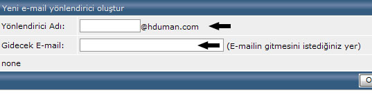 DirectAdmin E-mail Hesabı Yönlendirme 2